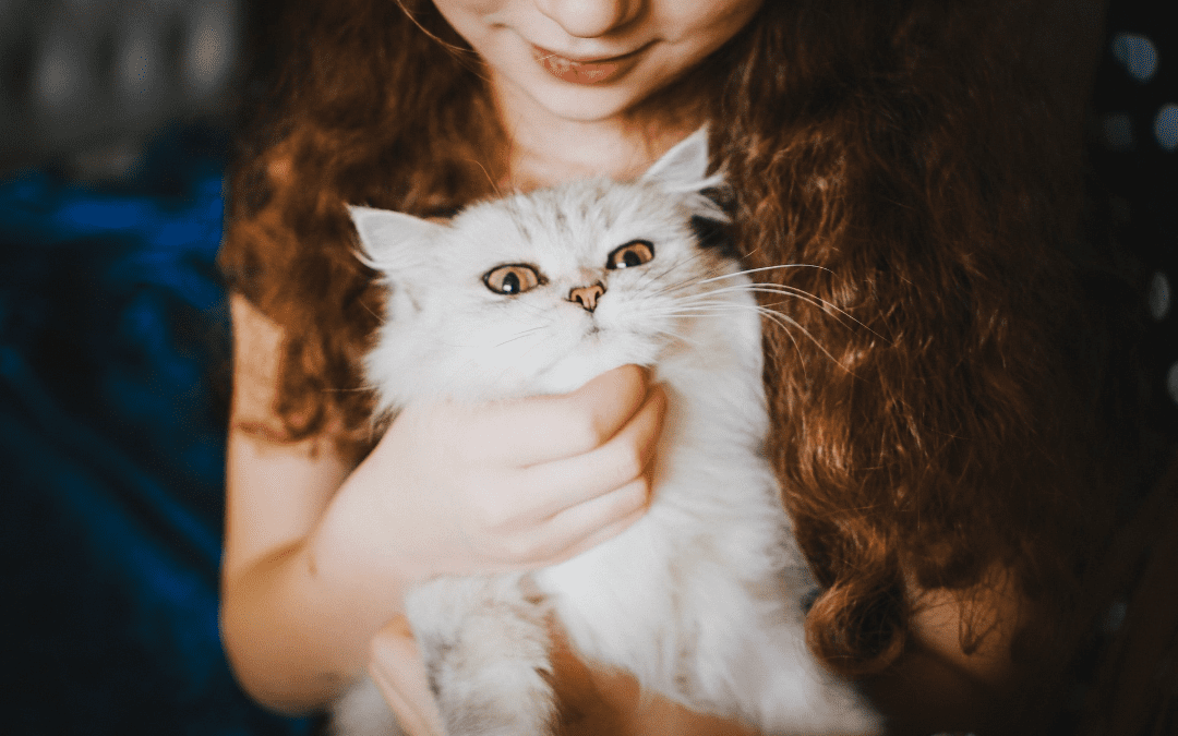 Show Your Pet Extra Love during Pet Appreciation Week